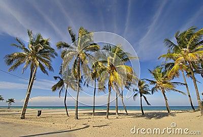 Tropical beach at Santa maria del mar, cuba
