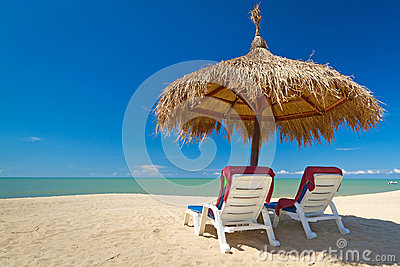 Tropical beach scenery with parasols