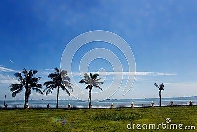 Tropical beach, Seaside