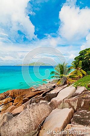Tropical beach. The Seychelles