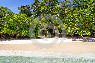 Tropical beach of Similan Islands