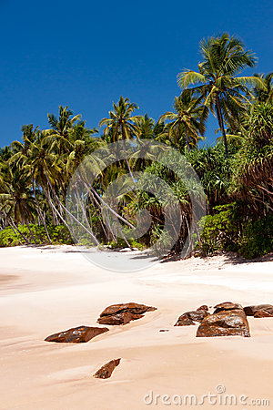 Tropical beach on Sri Lanka
