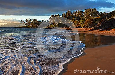 Tropical beach sunburst, Maui