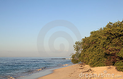Tropical beach during sunrise time