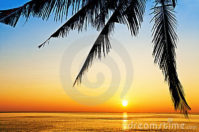 Tropical beach at sunset.