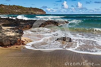 Tropical beach and surf kauai hawaii