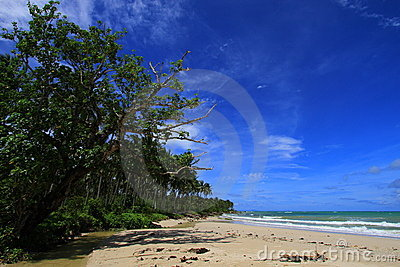 Tropical beach at Ujung Genteng Indonesia