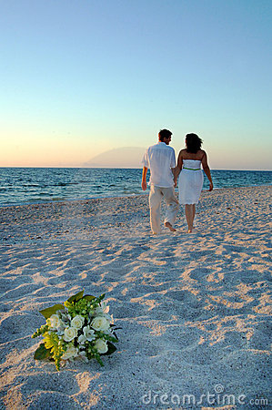 Free Tropical Beach Wedding Stock Photos - 7376633