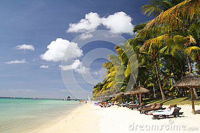 Tropical beach with white sand, palm trees and sun umbrellas