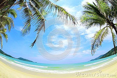 Tropical beach wide angle panorama