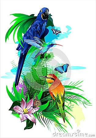 Free Tropical Birds. (Vector) Stock Photography - 46774392