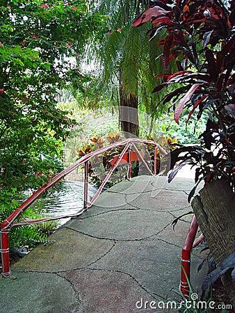 Free Tropical Bridge Stock Photos - 141033