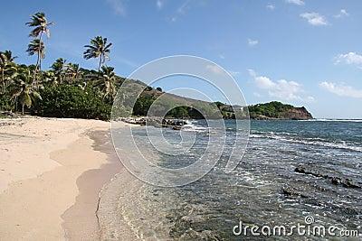 Tropical Caribbean beach,  Bequia