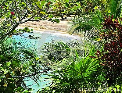 Tropical Caribbean Paradise, Honduras