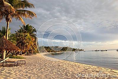 Tropical Coastline and Resort