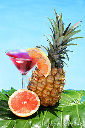 Free Tropical Cocktail Royalty Free Stock Image - 843866
