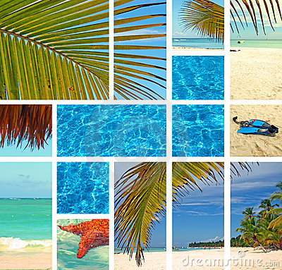 Tropical collage.