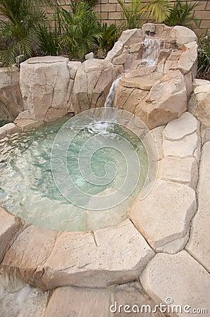Tropical Custom Pool Jacuzzi