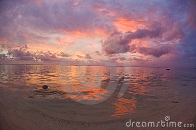 Tropical Dream Beach Sunset