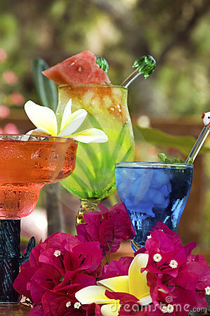 Free Tropical Drinks Stock Images - 2550494