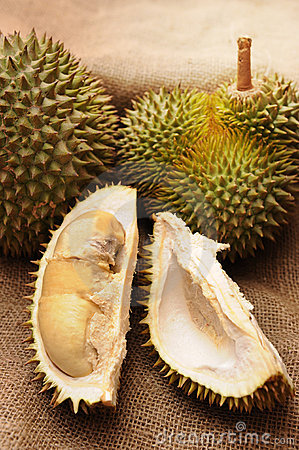Tropical Durian fruit