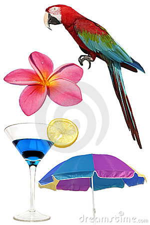 Free Tropical Elements Stock Images - 296304