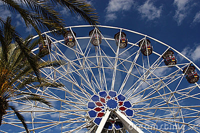 Tropical Ferris Wheel