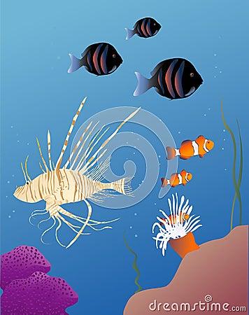 Free Tropical Fish Royalty Free Stock Photos - 1546128