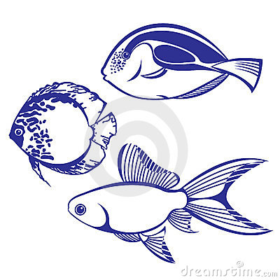 Free Tropical Fish Royalty Free Stock Photography - 18596257