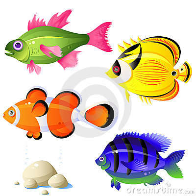 Free Tropical Fish Royalty Free Stock Photos - 8270588