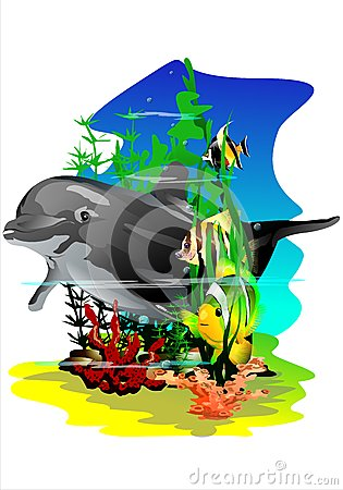 Free Tropical Fish And Dolphin. (Vector) Royalty Free Stock Image - 46584856