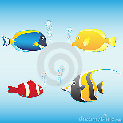 Tropical fish collection for yor design