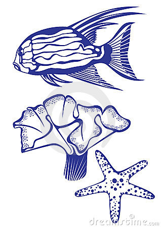 Free Tropical Fish, Coral And Starfish. Royalty Free Stock Images - 18894409