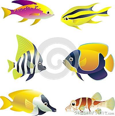 tropical fish sex