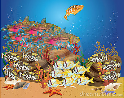 Tropical fish swim around the reef shoals
