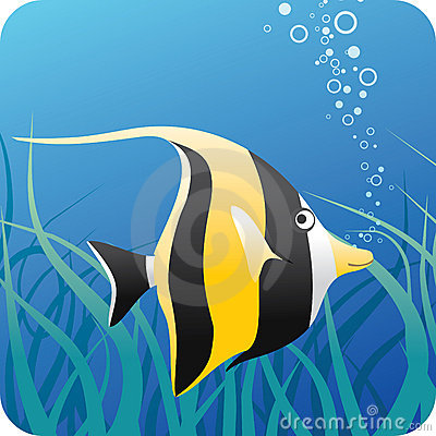 Free Tropical Fish Under Water Stock Photography - 5024692