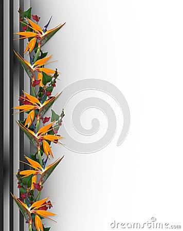 Tropical Flowers Border Bird of Paradise