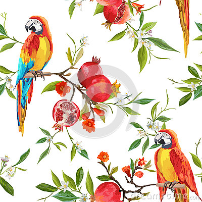 Free Tropical Flowers, Pomegranates And Parrot Birds Background Stock Photo - 75402230
