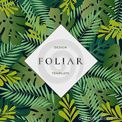 Free Tropical Forest Leaves Abstract Vector Background With Banner Template. Monstera Palm Leaf, Fern And Other Foliage With Royalty Free Stock Images - 114622999