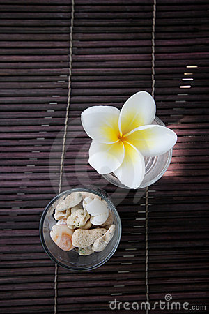 Tropical frangipani flower and stone decoration.