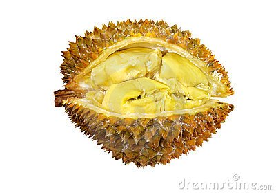 smelly fruit durian