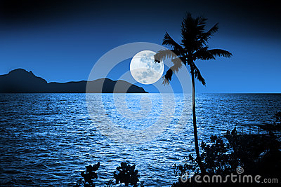 Ocean Night Moon Sky Tropical
