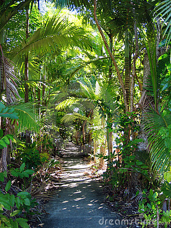 Free Tropical Garden Path Royalty Free Stock Photography - 9817797