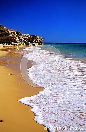 Tropical golden beach