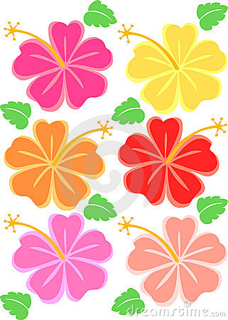 Tropical Hibiscus Flowers/eps