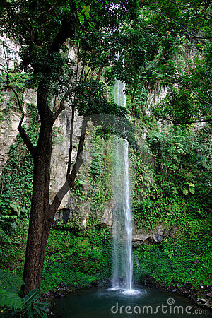 Tropical high waterfall