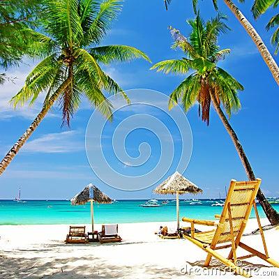 Free Tropical Holidays Stock Photos - 13942533