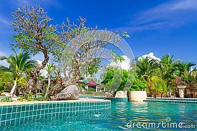 Tropical holidays at swimming pool