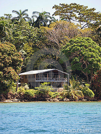 Tropical house and vegetation