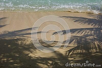 Tropical island beach.